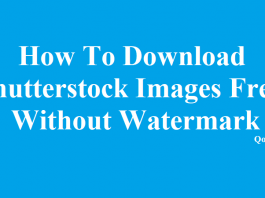 How To Download Shutterstock Images Free Without Watermark